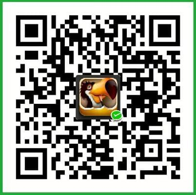 Difashi WeChat Pay